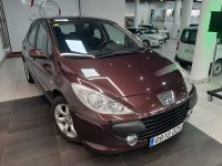 Peugeot 307 1.6 5p Violeta